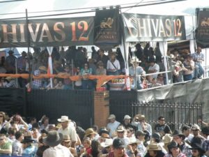 Toldo Chivas Regal