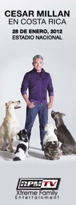 El Encantador de Perros - Cesar Millan en Costa Rica