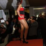 Pasarela Chica Hooters 2014 Disfraz Costa Rica - 092