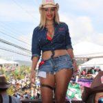 Toldo Pilsen - Tope Palmares 2015 Costa Rica - 082