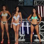Chica Reef 2015 Costa Rica - 076