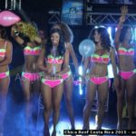 Chica Reef 2015 Costa Rica - 184