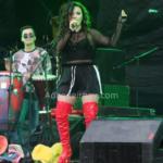 Avi Festival Picnic 2018